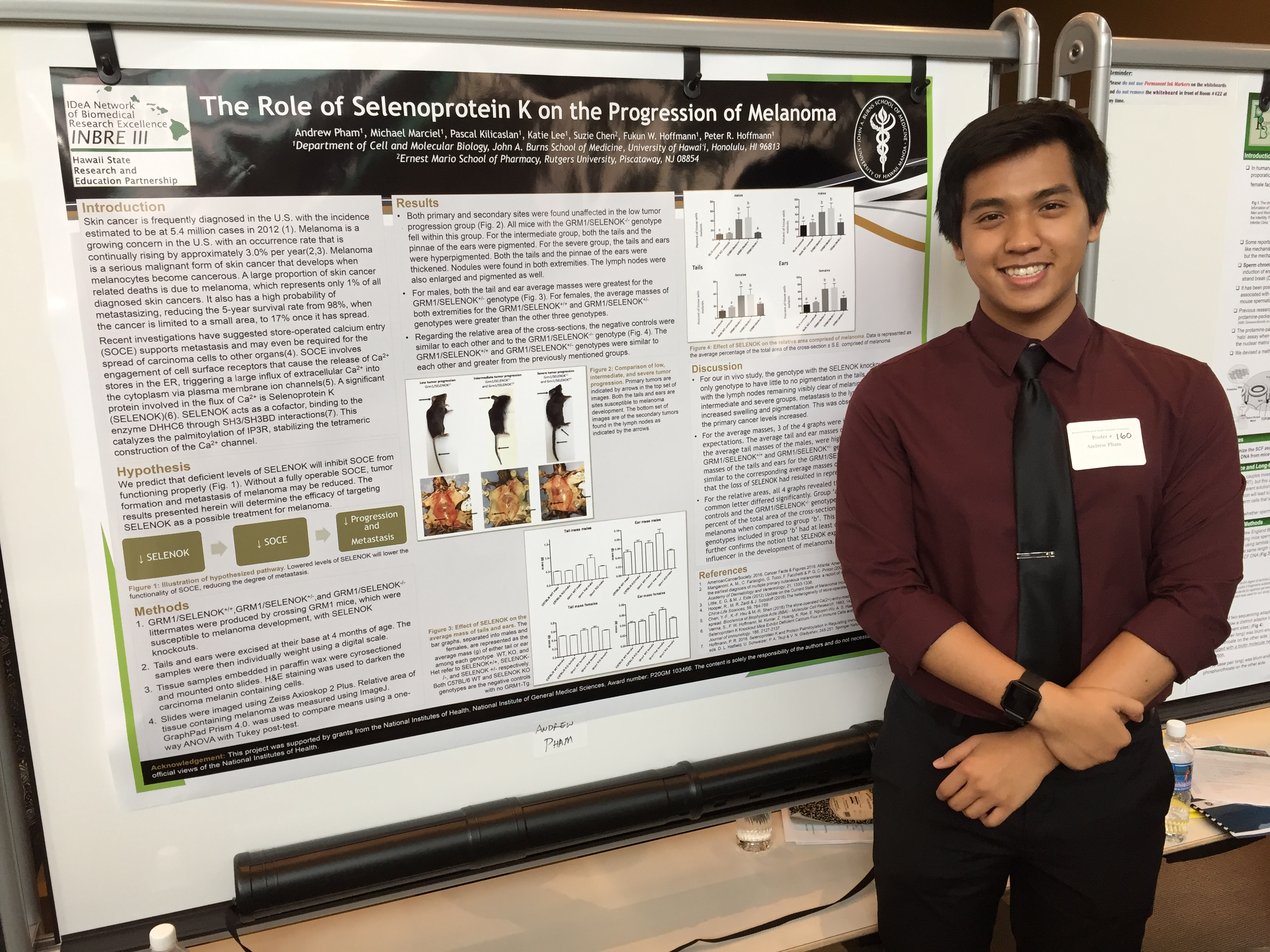 INBRE SRE Student, Andrew Pham, at the Undergraduate Poster Session
