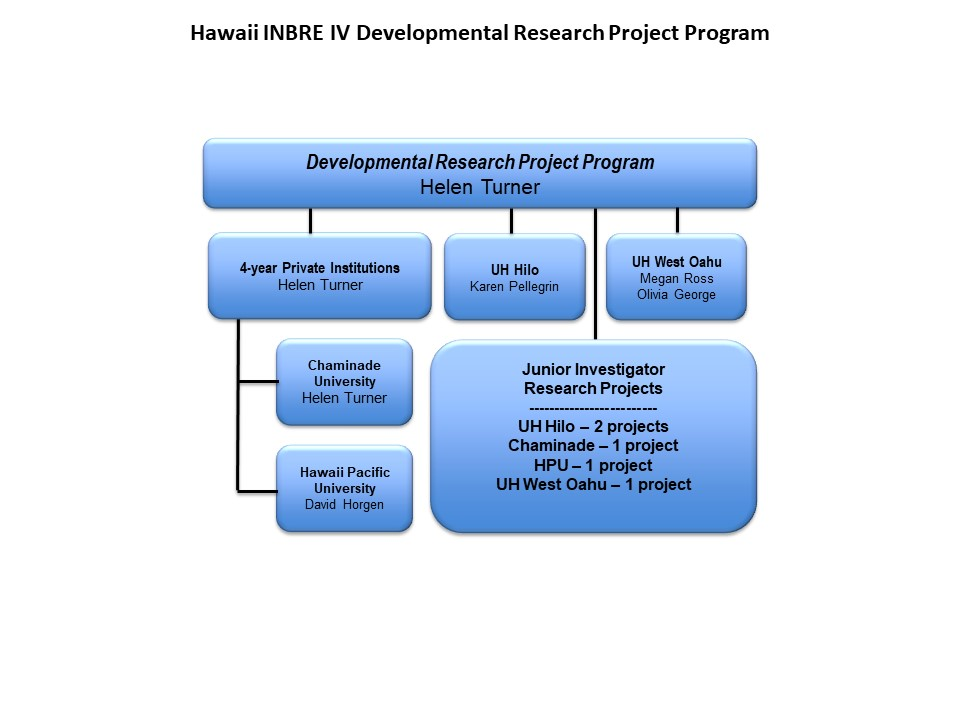 DRPP Org Chart